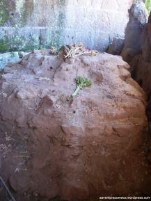 forum romano ara di cesare flores