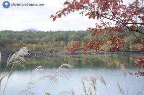 Fuji: Lago Saiko e BatCave