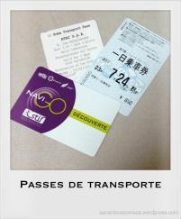 passe transporte