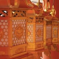 Visita à Nara: o santuário Kasuga Taisha