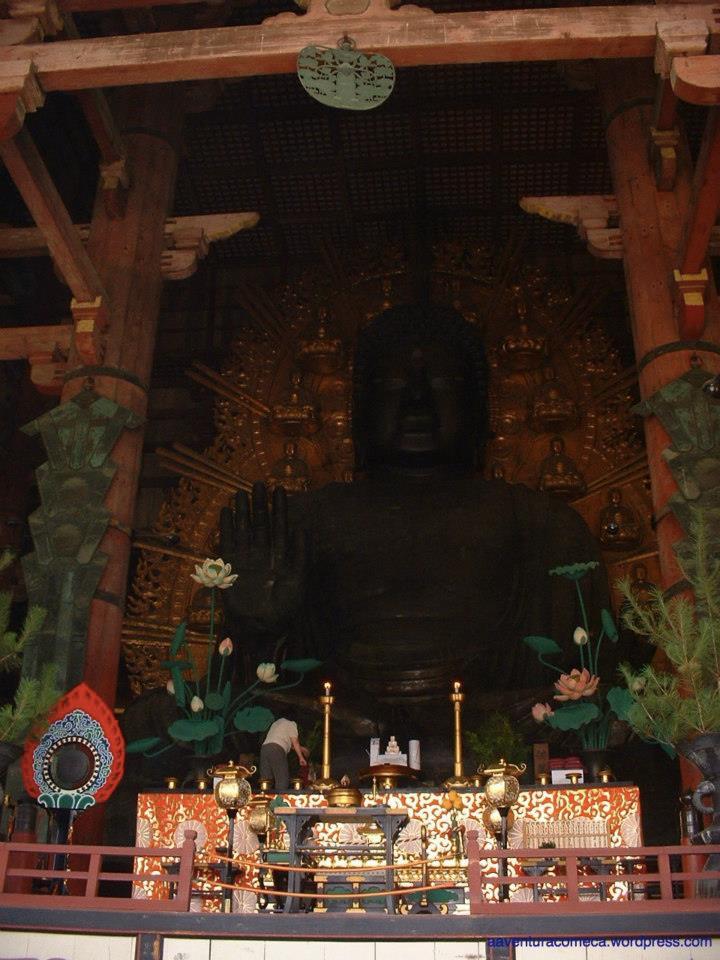 nara templo todaiji veados-1