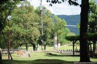 nara templo todaiji veados-9