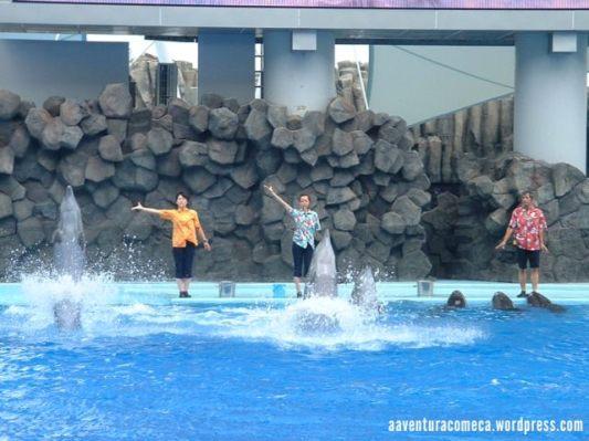 aquario nagoya-2