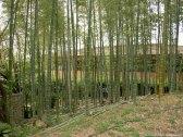 jardim shirotori nagoya-11