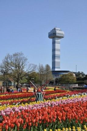 tulipas park kiso gifu japao-46