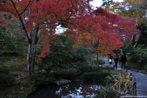 jardim tenryuji kyoto