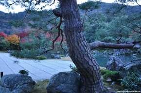 Arashiyama e o templo Tenryuji noOutono