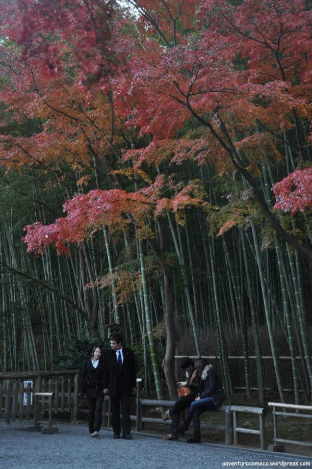 templo tenryuji kyoto japao4