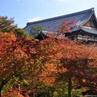 As belas paisagens do outono no Templo Tofukuji