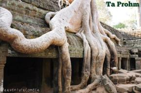 Camboja: Angkor Thom, Bayon, Baphuon e TaProhm