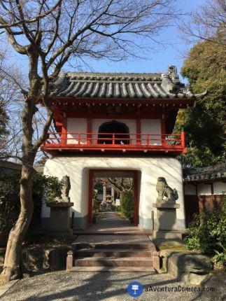 Portal Chinês