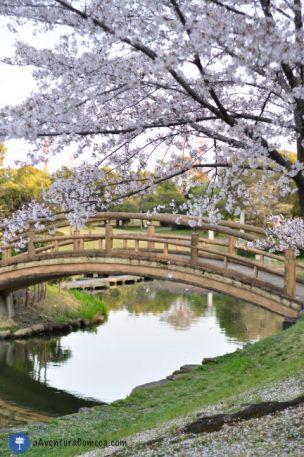 outra ponte linda