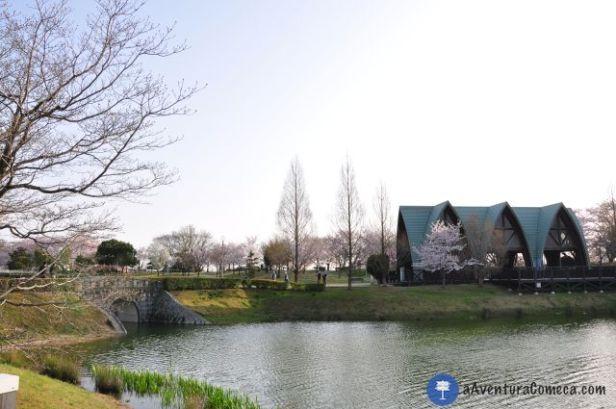 sakura japao parque ochiai lago