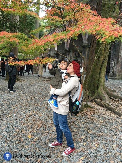 aqueduto nanzenji templo kyoto outono