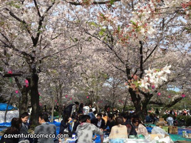 Foto 05-04-16 18 54 04