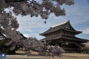 Sakura no Templo HigashiBetsuin