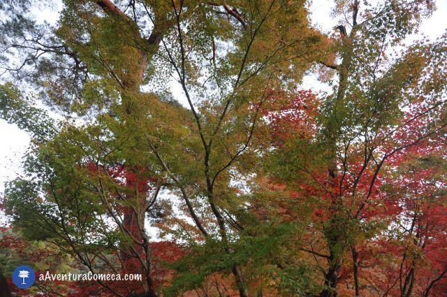 kyoto nanzenji templo outono