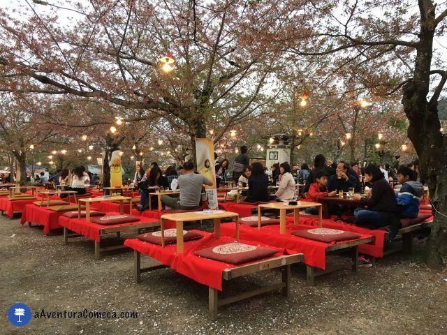 maruyama park kyoto